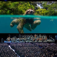 PLANET EARTH II LIVE IN CONCERT Adds New Bournemouth Date Photo