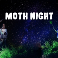 Celebrate National Moth Week With the Staten Island Museum Photo