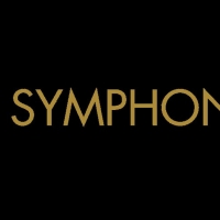 South Florida Symphony Orchestra Named Partner In The Arts For The Parker Photo