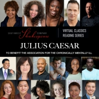 Trezana Beverley Stars in and Directs Virtual JULIUS CAESAR Photo