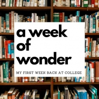 Student Blog: A Week of Wonder Photo