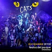 HIGHLIGHTS 2019 Q4: Natalia Sosa concluye su participación en CATS. Photo