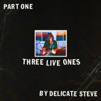 Delicate Steve Announces 'Delicate Steve's Tiny Arena Tour' + Releases New EP Photo