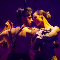 BWW Review: MATADOR at Her Majesty's Theatre Photo