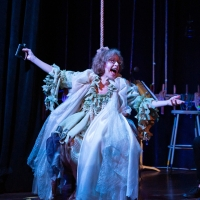 Review Roundup: Jackie Hoffman Returns to the Stage in FRUMA-SARAH (WAITING IN THE WI Photo