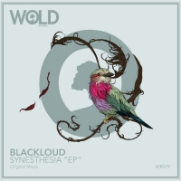 BLACKLOUD Delivers Stimulating Melodic Techno in 'Synesthesia' EP Photo