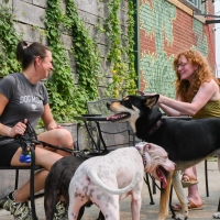 CRAFT HALL Unleashes Philly's Only Dog Park and Beer Garden Photo