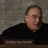 VIDEO: Mandy Patinkin Joins Season Five of THE GOOD FIGHT; Check Out an All New Trail Photo