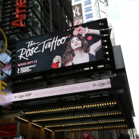 BWW TV: Watch Broadway Walk the Red Carpet on Opening Night of THE ROSE TATTOO Photo