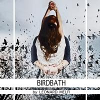 BIRDBATH to be Presented on Demand by KNOW Theatre Photo