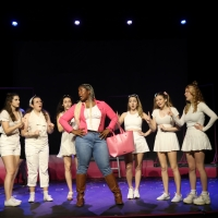 Woodstock Arts' LEGALLY BLONDE Goes Viral Photo