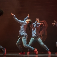Chicago Dance Crash to Premiere THE LAST FIRST: PROFESSIONAL DANCEMAKING IN 2020 CHIC Photo