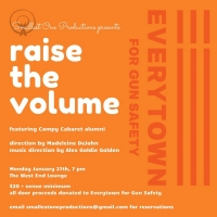 Smallest One Productions Presents RAISE THE VOLUME: A Concert Benefiting Everytown Fo Photo