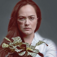 BWW REVIEW: THE LINDEN SOLUTION Highlights The Dangers Of An Apathetic Society Content To Photo