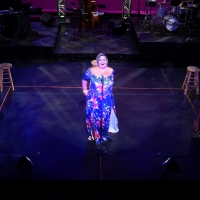 Porchlight Music Theatre's PorchlightPalooza Was A Success! Photo