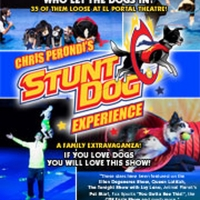 El Portal Theatre Kicks Off 2020 With Ice Skating On Stage, 35 Stunt Dogs And More! Photo