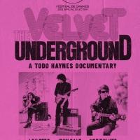 VIDEO: Trailer Released for Todd Haynes' THE VELVET UNDERGROUND Photo