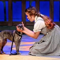 BWW Review: WIZARD OF OZ at Theatre In The Park