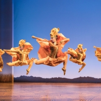 BWW Review: After 21 Years, THE LION KING is a Royal Treat at Marcus Center Photo