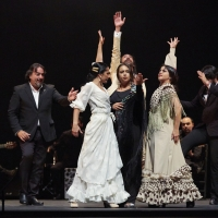 Flamenco Festival Celebrates 20 Years In NYC With The Largest Flamenco Offering Ever  Photo