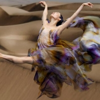 VIDEO: Iris Van Herpen and Dutch National Ballet Present BIOMIMICRY Photo