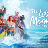 THE LITTLE MERMAID Panto To Be Staged In Malta For The First Time