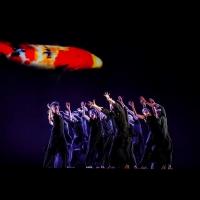 The Auditorium Theatre Presents A Free Virtual Event - Cloud Gate Dance Theatre Of Taiwan Photo
