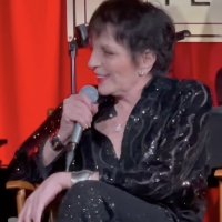 VIDEO: Watch Liza Minnelli Take the Stage to Sing a Gershwin Classic Photo