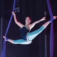 BWW Review: CIRQUE BESERK!, Garrick Theatre Photo