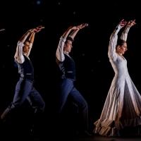 BWW Review: BALLET FLAMENCO DE ANDALUCIA at Grande Théâtre Photo