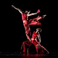 Nai-Ni Chen Dance Company to Showcase the Company's Three Touring Programs in City Ce Photo