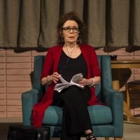 Lucas Hnath's DANA H. Starts Friday At Goodman Theatre Photo