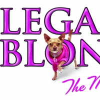 Ali Funkhouser, Ryan Vona & More to Star in LEGALLY BLONDE at Franklin Performing Art Photo