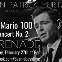 BWW Previews: Sean Patrick Murtagh THE MARIO 100! Concert No. 2 Set For February 27th Photo