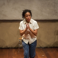 Detroit Public Theatre and Chautauqua Theater Company Bring Solo Theatre Productions to Pu Photo