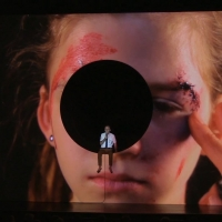 BWW Review: Daniel Fish's WHITE NOISE Experiments with Adaptation