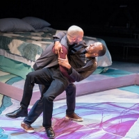 BWW Review: THIS BITTER EARTH at Theater Alliance Photo