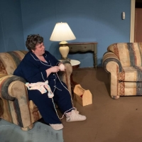 BWW Review: 'NIGHT, MOTHER at Ankeny Community Theatre: Tackling a Difficult Topic Photo