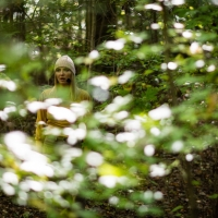 Caramoor Presents The Crossing In Socially Distanced Experience THE FOREST Photo
