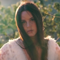 VIDEO: Watch Lana Del Rey's New Music Video for 'Arcadia' Photo