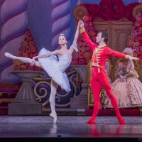 BWW Review: Toronto International Ballet Theatre's THE NUTCRACKER Proves That What Glitters Can Be Golden