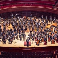 Online, Pre-Recorded Auditions Being Accepted For PYO's Music Institute's 2021-2022 Season Photo