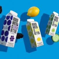 BOXED WATER IS BETTER® Launches 4 New Flavors Photo