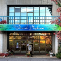 Learn More About the Peacock Performing Arts Center in Hayesville! Photo