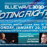 BLUE WAVE 2020: THE VOTING RIGHTS SHOW Comes To Hidden Cabaret At The Secret Room Photo