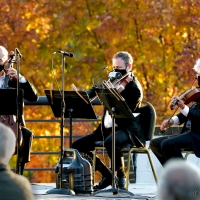 Members Of The Orpheus Chamber Orchestra Will Appear at The Morris Museum's Lot Of Strings Photo