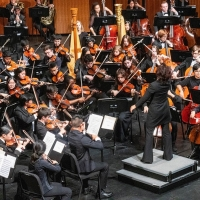 New Jersey Youth Symphony Announces Video Auditions Photo