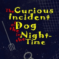 Casting Announced For TampaRep's THE CURIOUS INCIDENT OF THE DOG IN THE NIGHT-TIME Photo