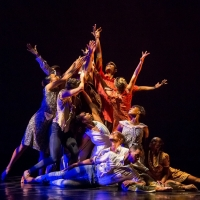 Dallas Black Dance Theatre Celebrates African American Dance Masters In a Virtual Performa Photo