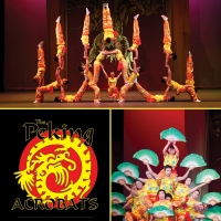 The Peking Acrobats are Coming to the WYO in February